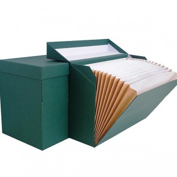 Caja transferencia fuelle geltex 20 departamentos foliolomo 210mm verde