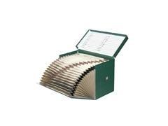 Caja transfrerencia fuelle geltex 20 departamentos foliolomo 210mm verde