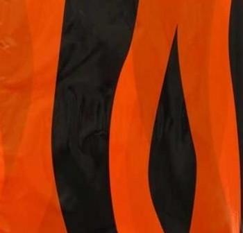 Fixo kids Paquete 25 bolsas disfraz 56x70cm naranja/negro