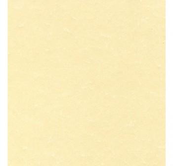 Bolsa 20h papel textura APLI 95gr A4 pergamino champan