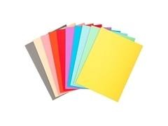 Pack de 100 subcarpetas de cartulina FOREVER 250 (240 gr.) 10 colores surtidos