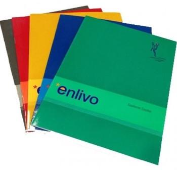 ENLIVO Libreta grapada folio pauta  1linea